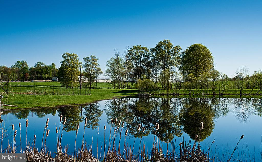 View of 2nd Pond on the property - 21281 BELLE GREY LN, UPPERVILLE