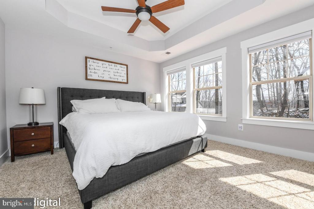 Primary bedroom with tray ceilings. - 6720 OAKRIDGE RD, NEW MARKET