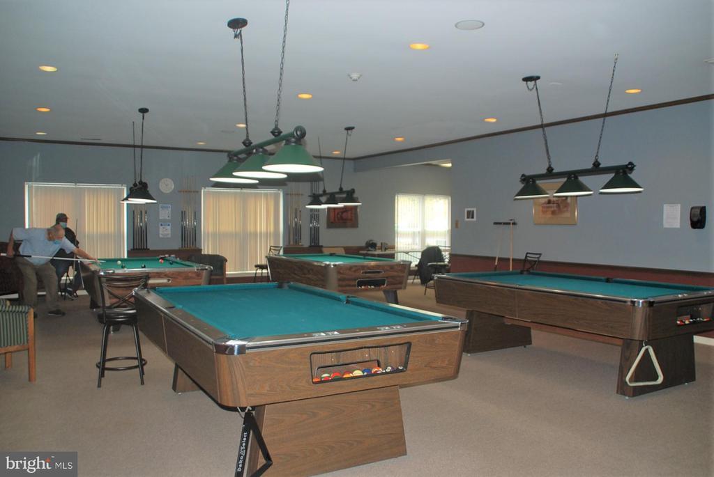Billiard Room - 7050 BASSWOOD RD #11, FREDERICK