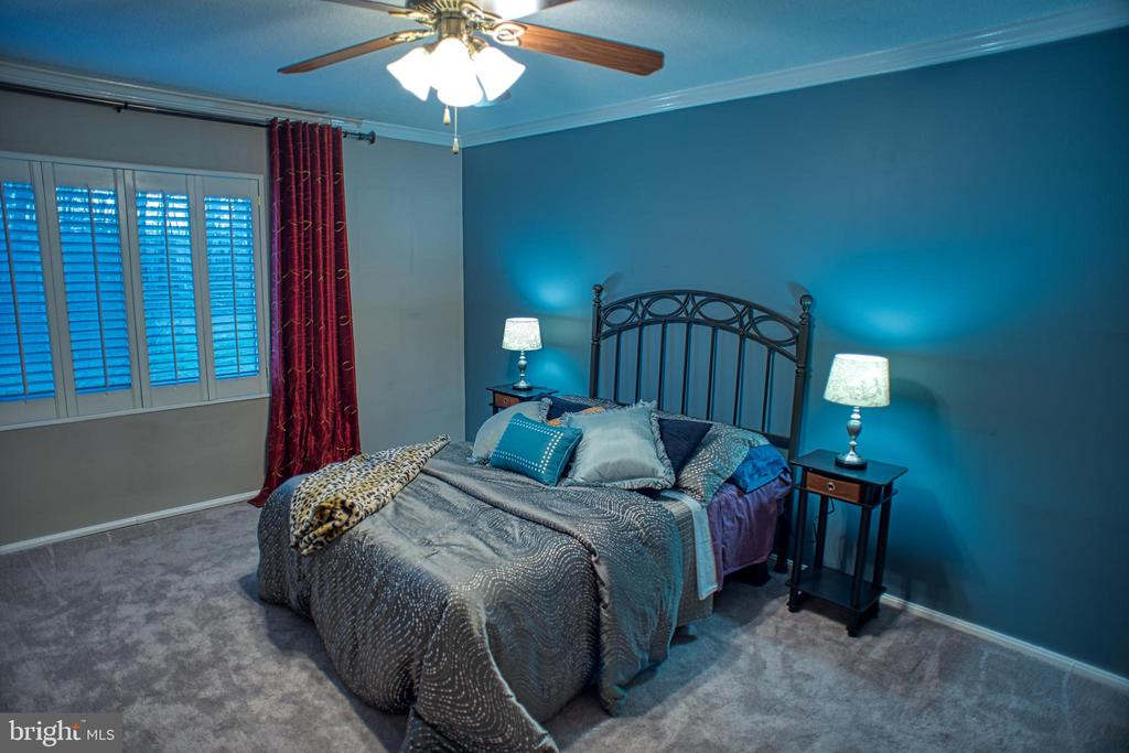 Primary Bedroom w/Plantation Shutters - 203 YOAKUM PKWY #317, ALEXANDRIA