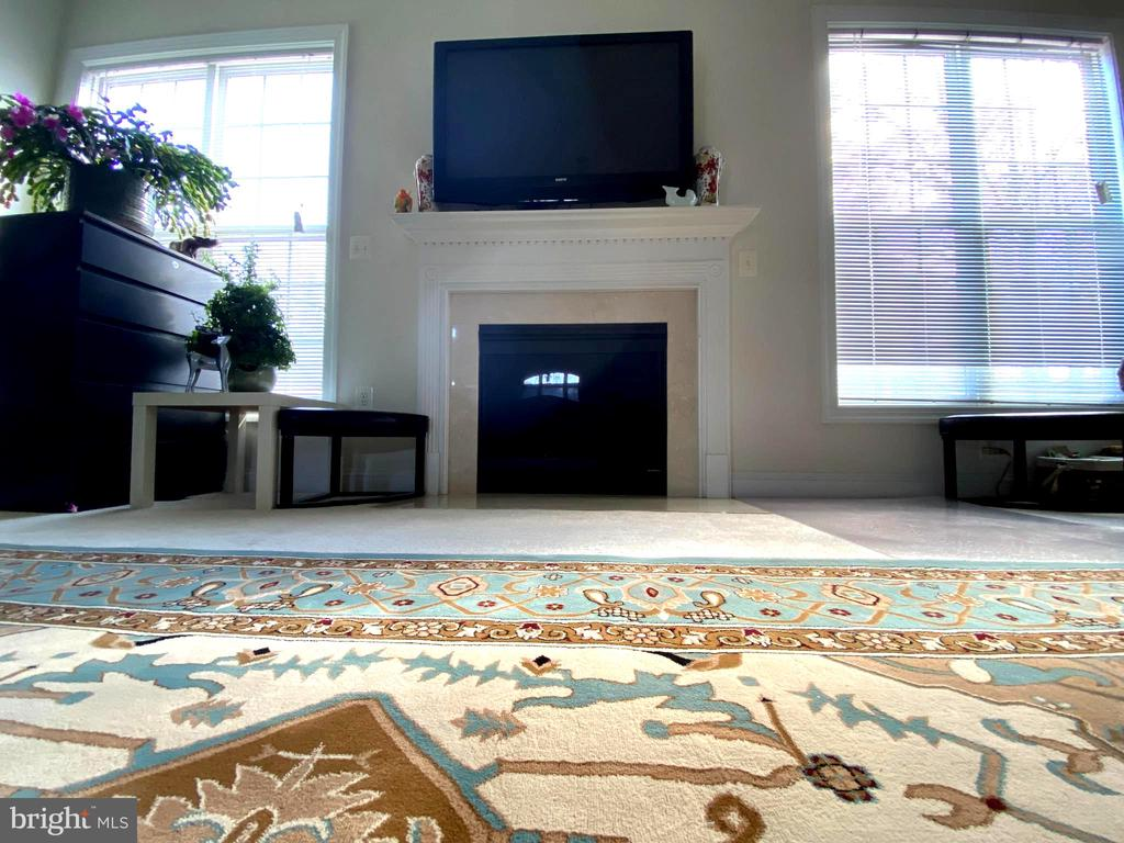 Family Room - 201 GREENHOW CT SE, LEESBURG