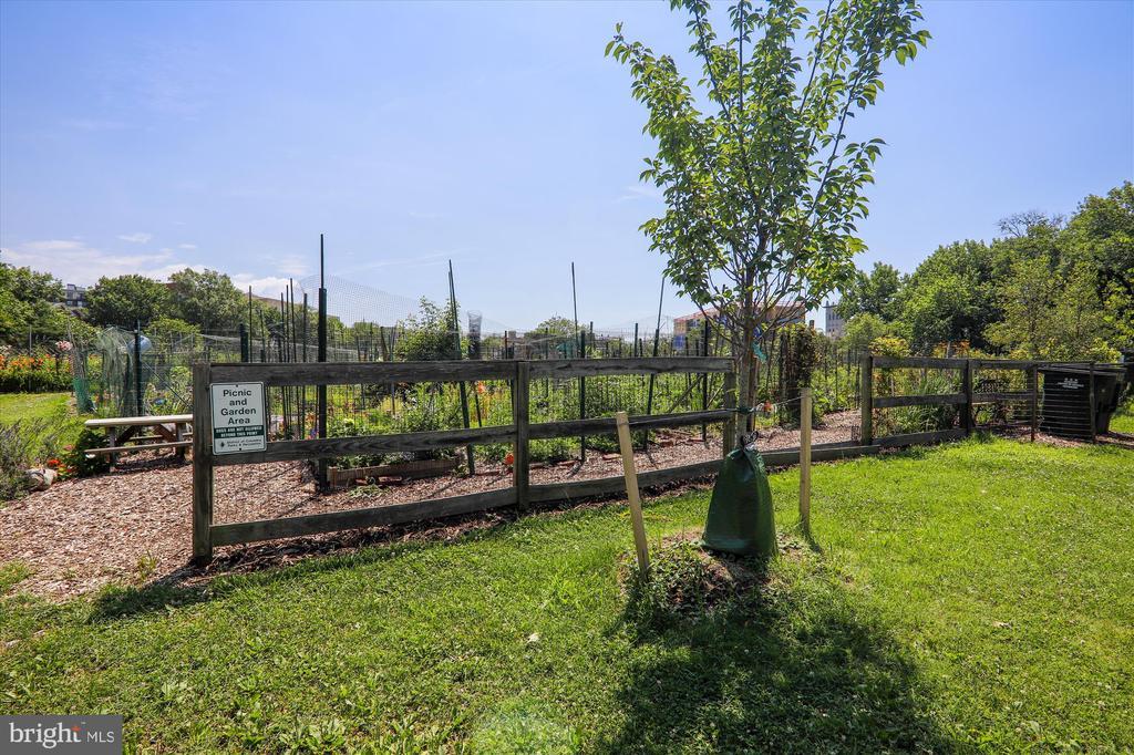 McLean Gardens Community Garden - 3640 39TH ST NW #D526, WASHINGTON