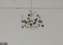 Dining Room light fixture - chandelier - 19365 CYPRESS RIDGE TER #416, LEESBURG