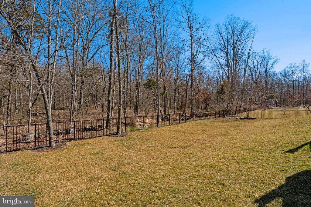 Backyard View of 100 Acres of Woods - 22522 WILDERNESS ACRES CIR, LEESBURG