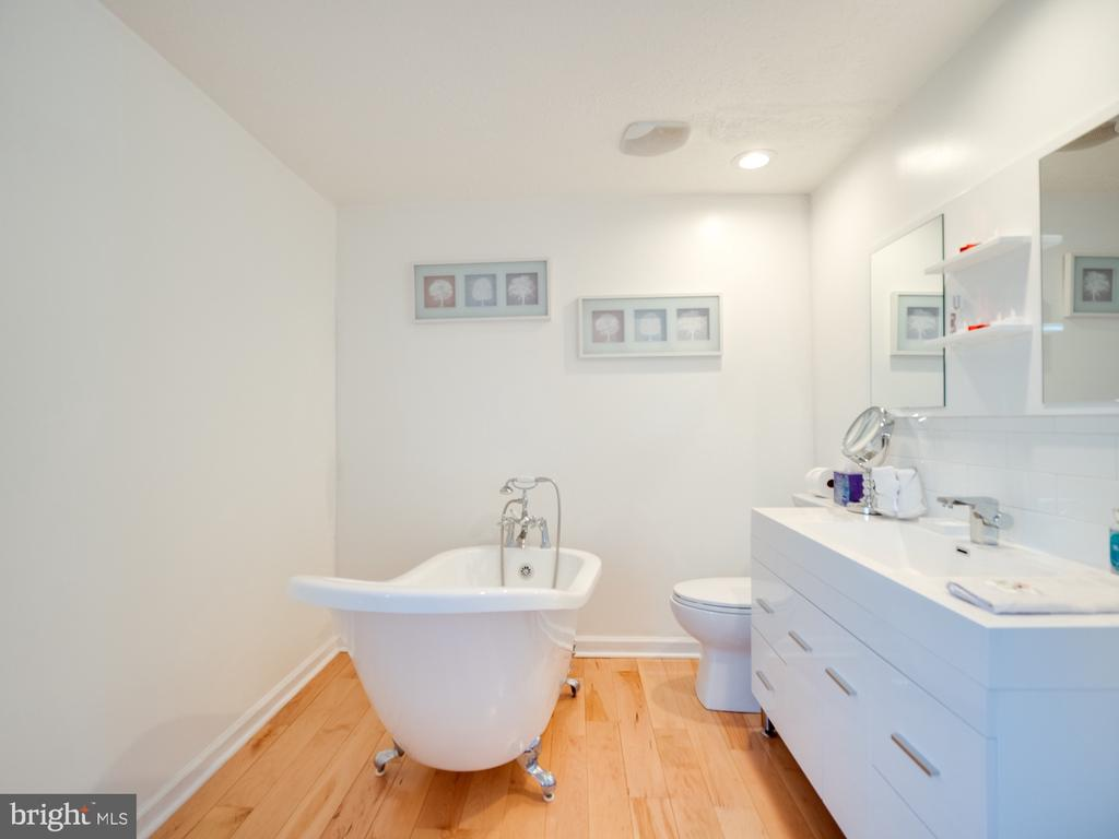 Modern Craw Foot Tub in Master Bedroom - 1677 BAYFIELD WAY, RESTON
