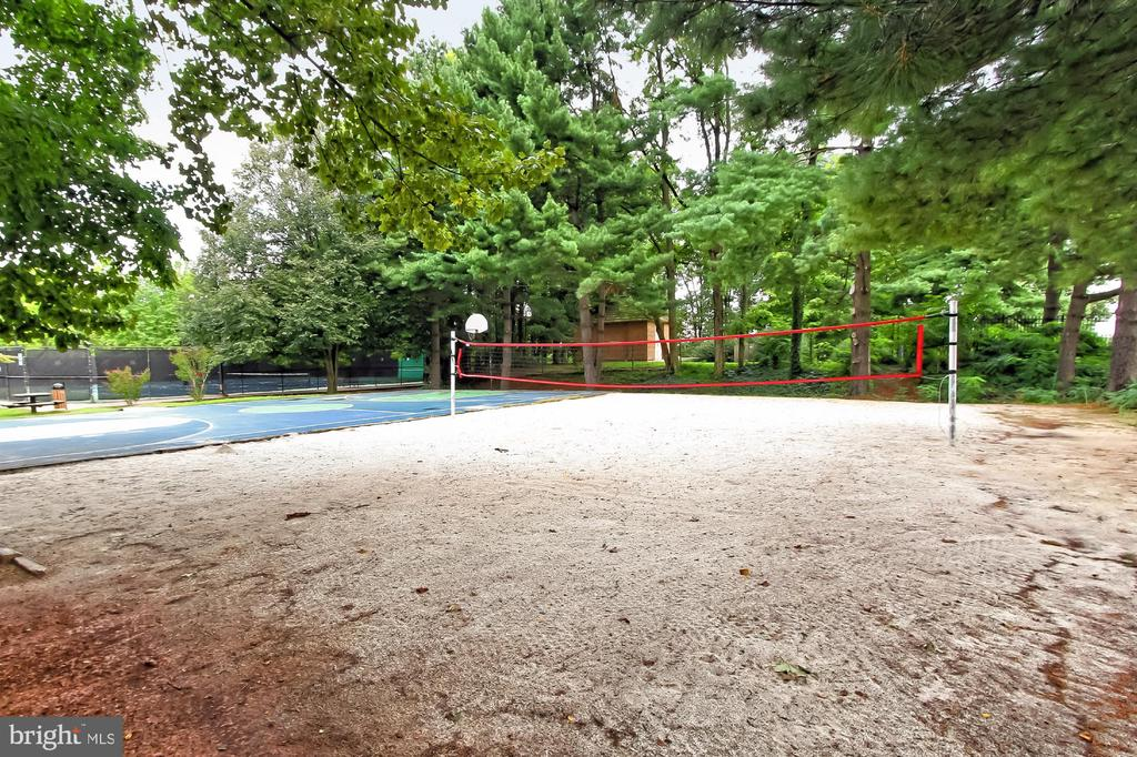 Volleyball and sport courts! - 8380 GREENSBORO DR #1017, MCLEAN
