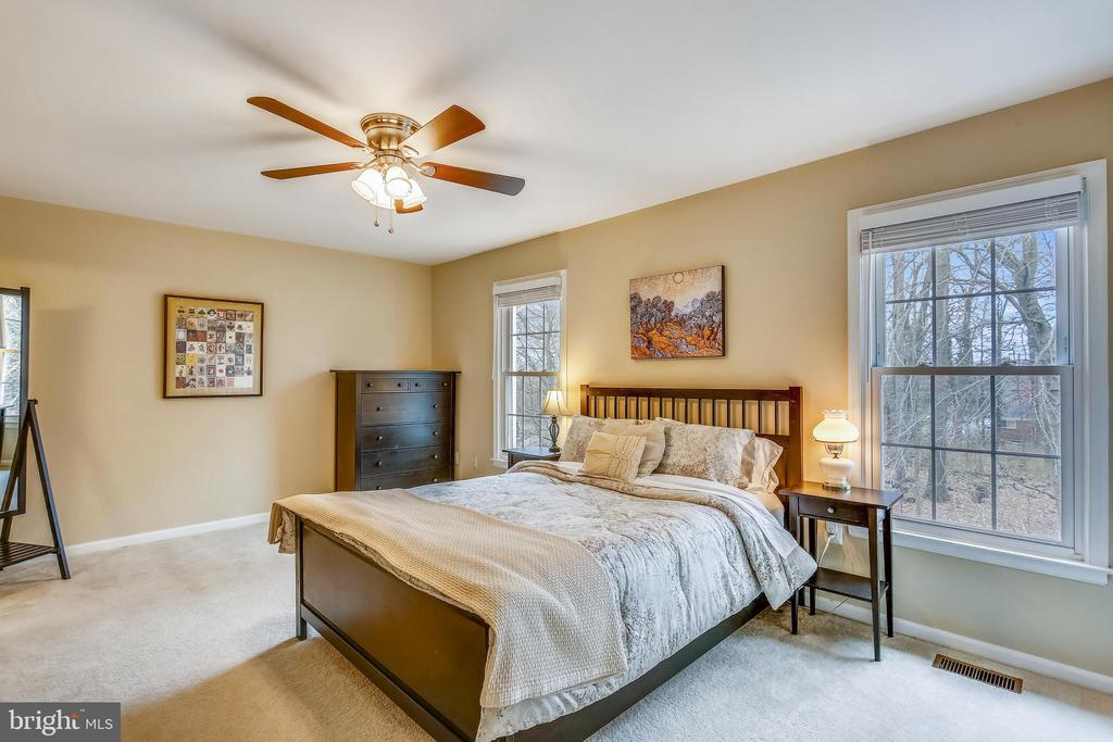 Primary master bedroom suite with wooded views - 10828 DOUGLAS AVE, SILVER SPRING