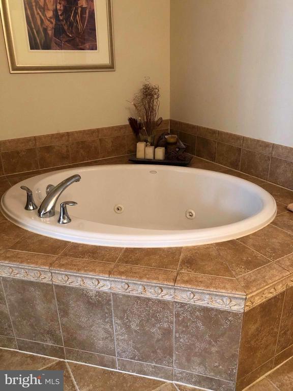 Master tub - 23600 BENNETT CHASE DR, CLARKSBURG