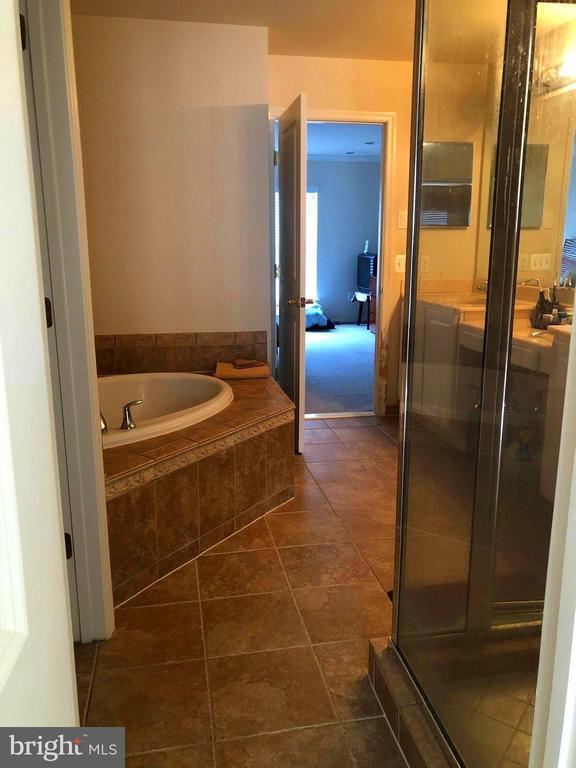 Master Bathroom - 23600 BENNETT CHASE DR, CLARKSBURG