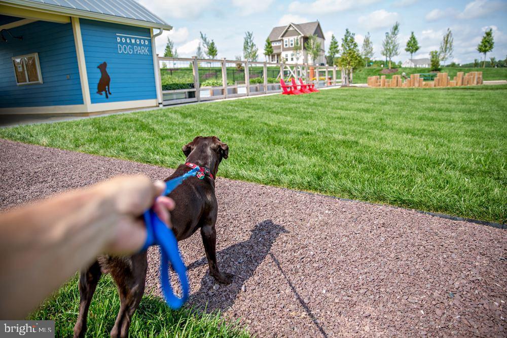 Dog walk/ walking path - 950 ASPEN RD, STAFFORD