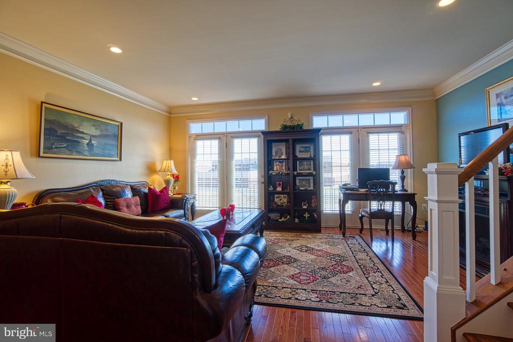 Beautiful Family Room with Lots of Natural Light - 23399 CARTERS MEADOW TER, ASHBURN