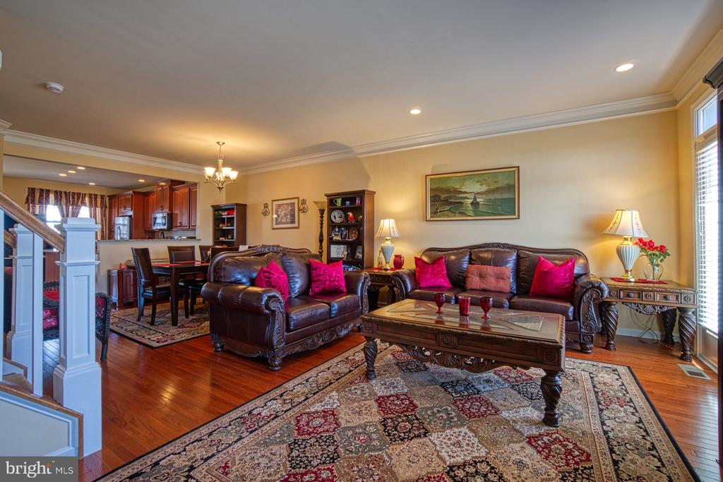 Lovely Living Room/Family Room - 23399 CARTERS MEADOW TER, ASHBURN