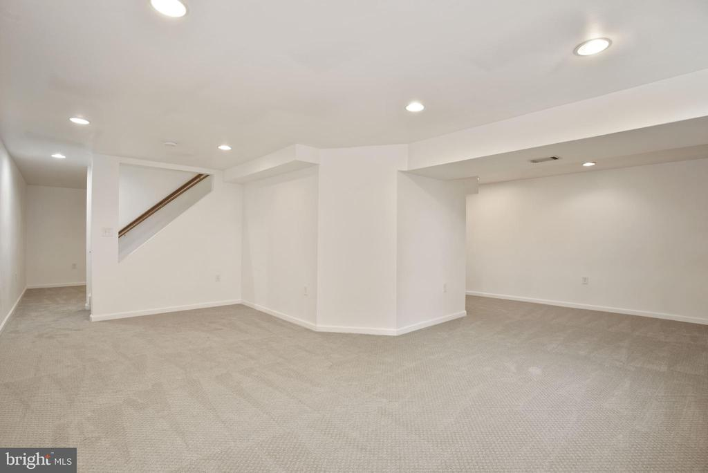 finished lower level - 1510 MEADOW CHASE DR, HERNDON