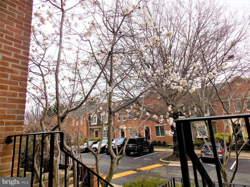 View from front door - 123 GRETNA GREEN CT, ALEXANDRIA