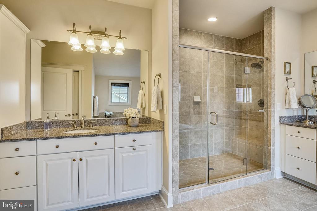 Primary Bathroom Walk In Shower - 17243 MISS PACKARD CT, DUMFRIES
