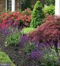 Front yard in the summer full of color - 10286 GREENSPIRE DR, OAKTON