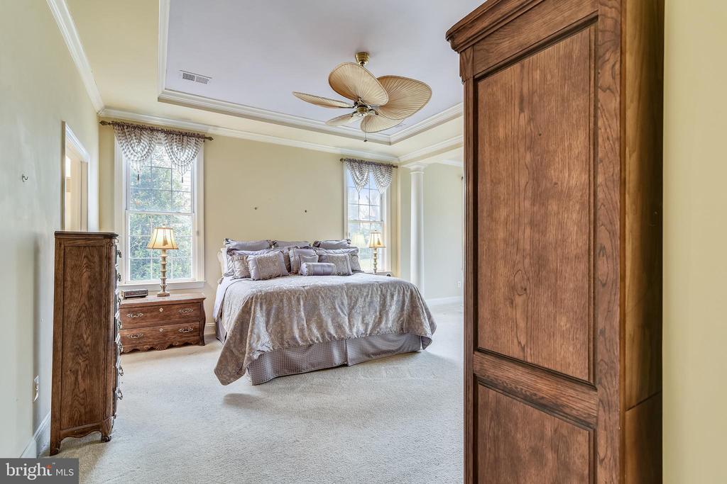 Owner's suite w/ trey ceilings. - 5312 TREVINO DR, HAYMARKET