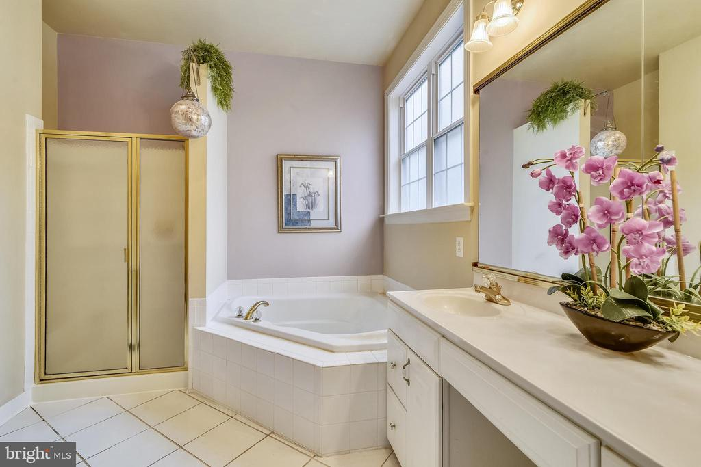 Owner's Bath w/ separate tub and walk in shower. - 5312 TREVINO DR, HAYMARKET