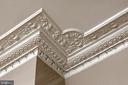 Original ornate plaster crown moldings in the LR - 711 PRINCE ST, ALEXANDRIA
