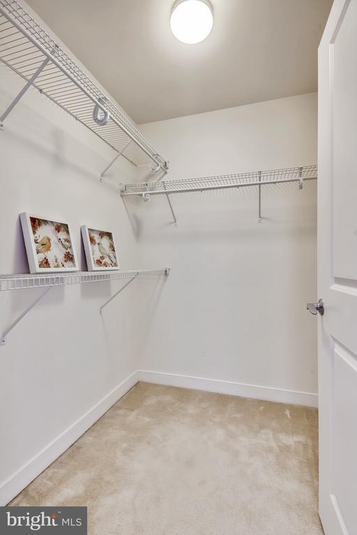 HUGE Walk-In Closet - 157 FLEET ST #413, NATIONAL HARBOR