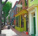 Minutes to shops, restaurants, Old Town, DC... - 3903 BELLE RIVE TER, ALEXANDRIA