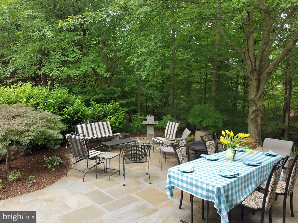 Slate patio in front yard - 20693 LONGBANK CT, STERLING