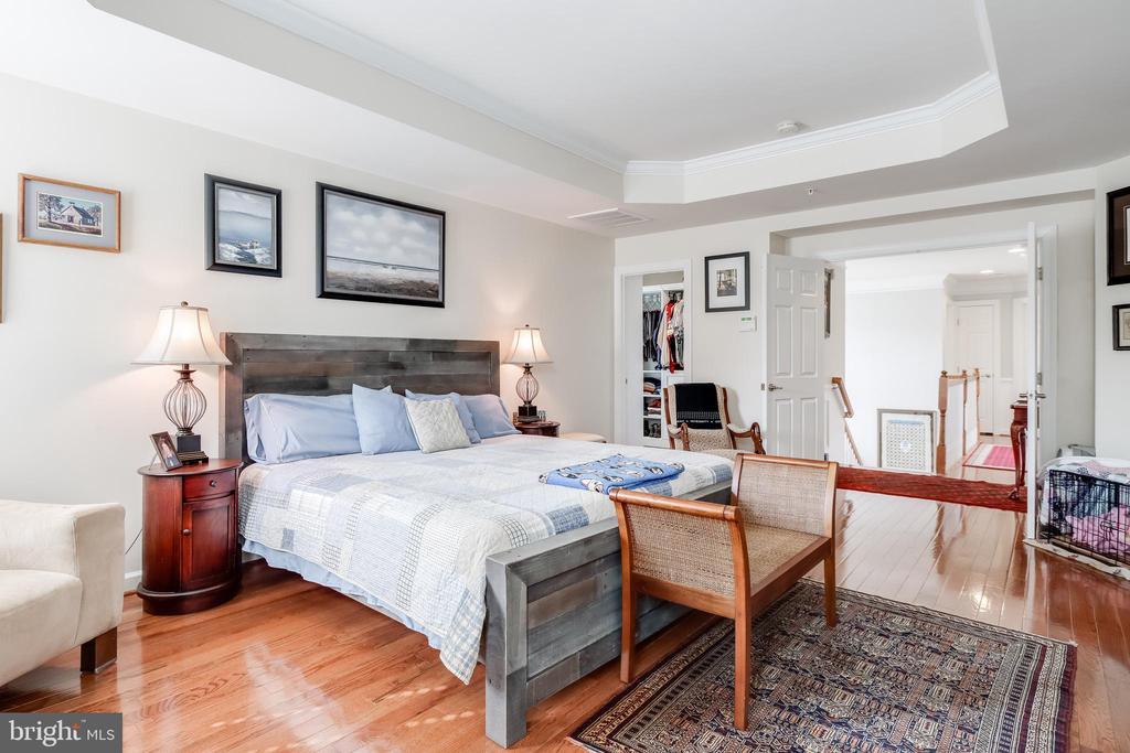 Primary bedroom - 113 MAROON CT, FREDERICK