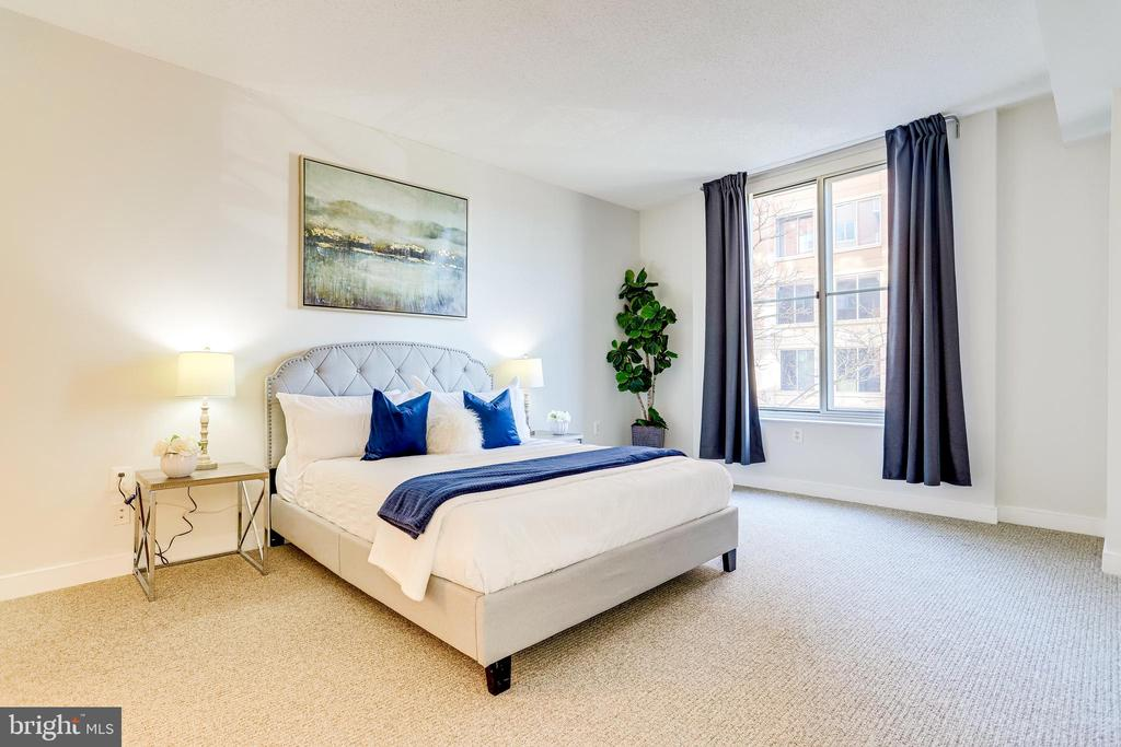 King-Sized Primary Suite w/Ample Sitting Space - 820 N POLLARD ST #208, ARLINGTON