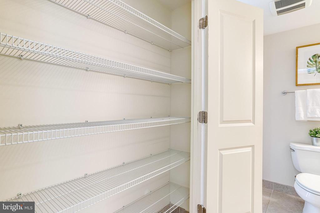 BIG Linen Closet/Extra Storage - One of Many - 820 N POLLARD ST #208, ARLINGTON