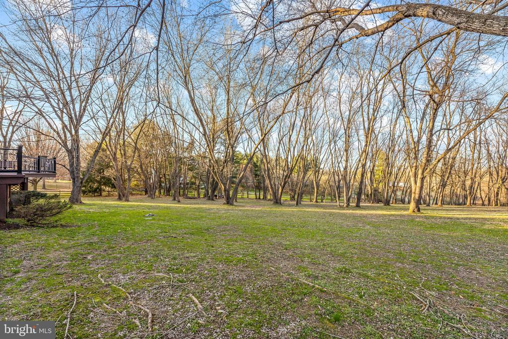 Large Flat Yard Perfect for Your Future Pool - 13219 LANTERN HOLLOW DR, NORTH POTOMAC
