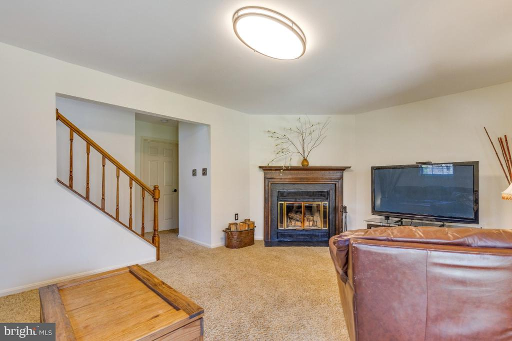 Large recreation space perfect for movies or media - 5731 MASON BLUFF DR, BURKE