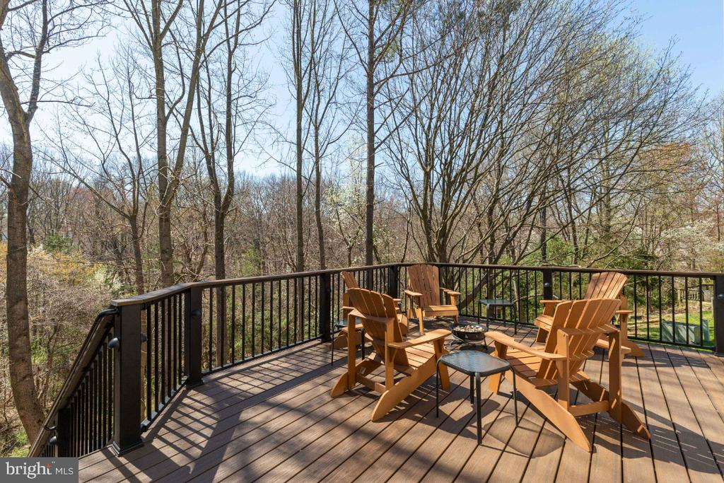 Expansive views of wooded protected land - 5731 MASON BLUFF DR, BURKE