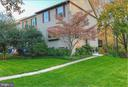 Greenery abounds - 5731 MASON BLUFF DR, BURKE