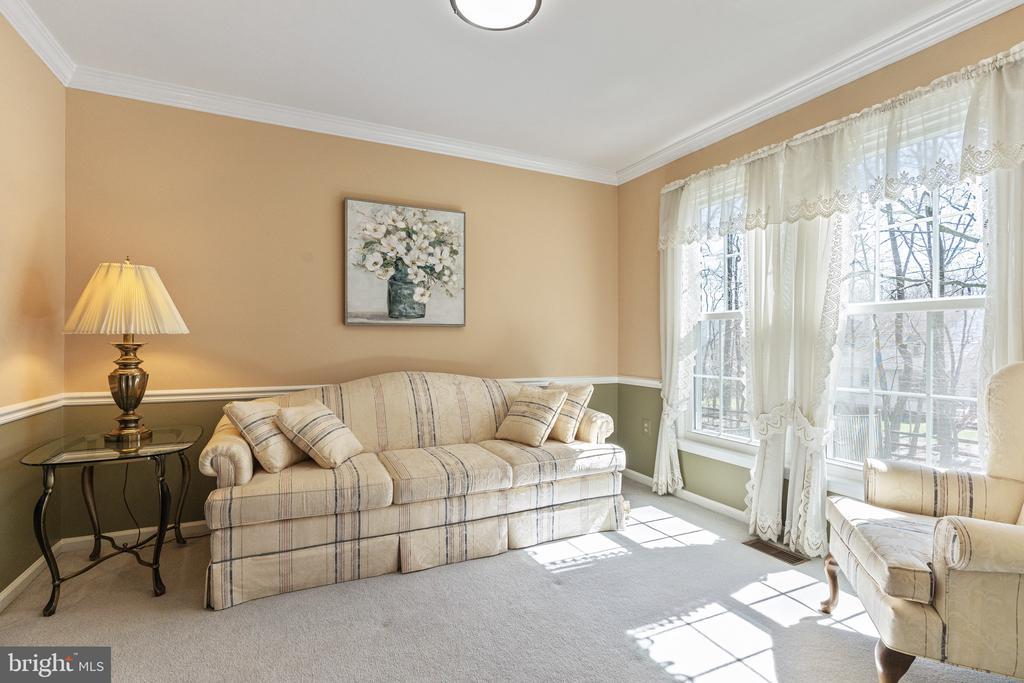 Living Room - 9729 IRONMASTER DR, BURKE