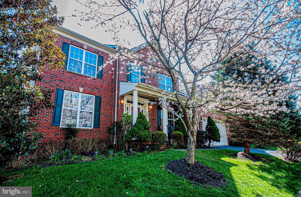 Blossom tree in front - 11413 RAMSBURG CT, NORTH POTOMAC