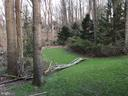 Backyard; large,cleared and private - 9365 CAMPBELL RD, VIENNA