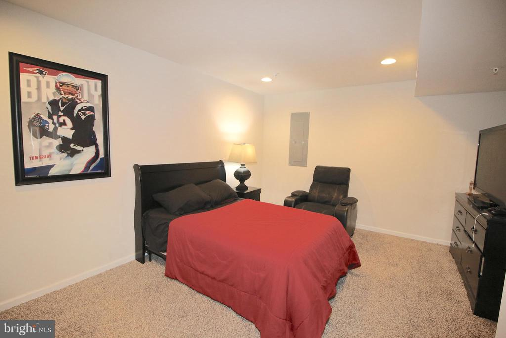 Den/ Movie room or Guest Bedroom in Basement - 2532 SWEET CLOVER CT, DUMFRIES