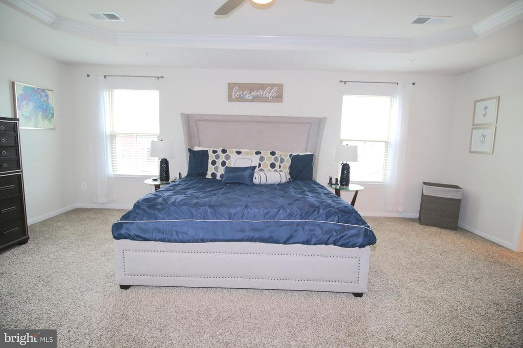 Large Master Bedroom with Tray Ceilings - 2532 SWEET CLOVER CT, DUMFRIES