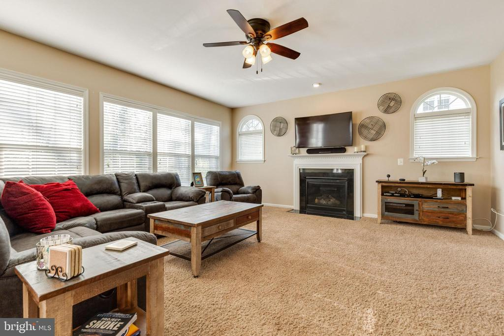 Light and bright family room - 15659 ALTOMARE TRACE WAY, WOODBRIDGE