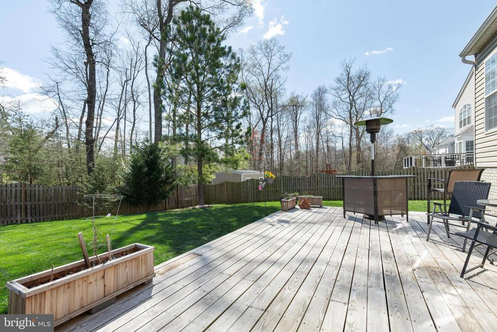 Large Deck - 15659 ALTOMARE TRACE WAY, WOODBRIDGE