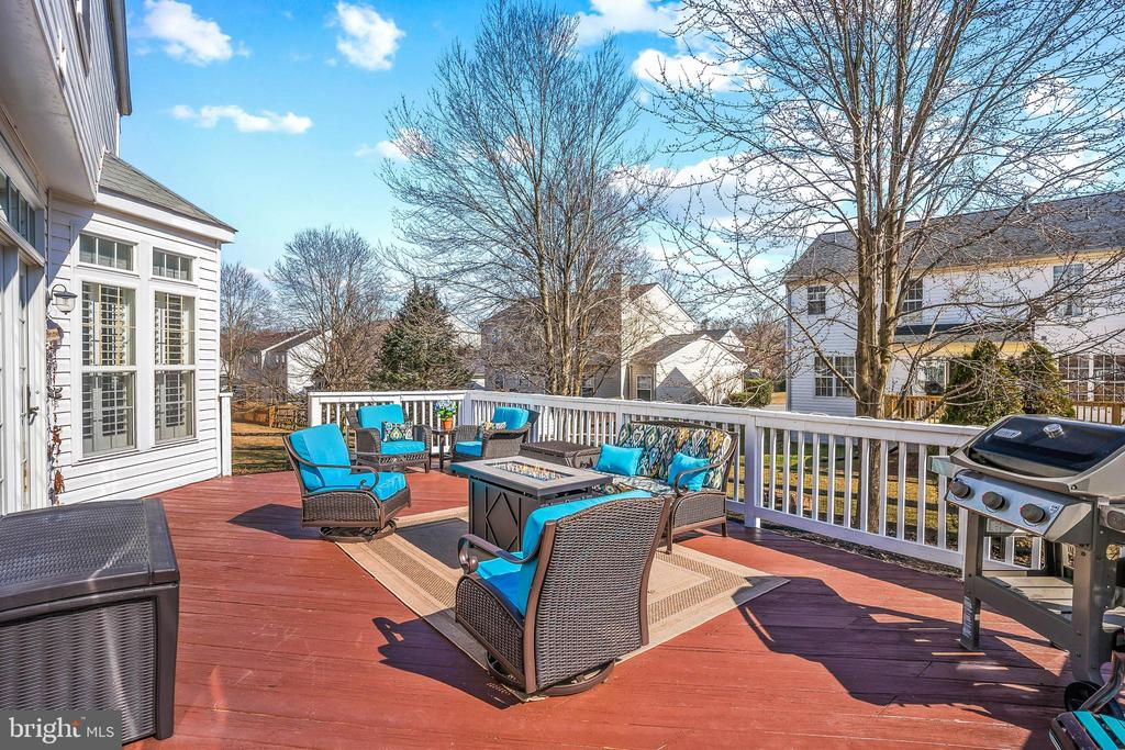 Perfect space for relaxing or entertaining! - 43191 BURSTALL CT, LEESBURG