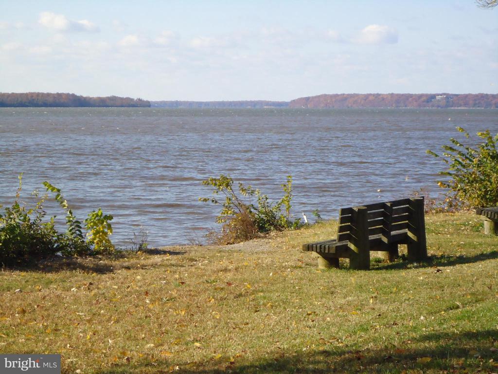 Living near the Potomac River is wonderful. - 8522 CYRUS PL, ALEXANDRIA