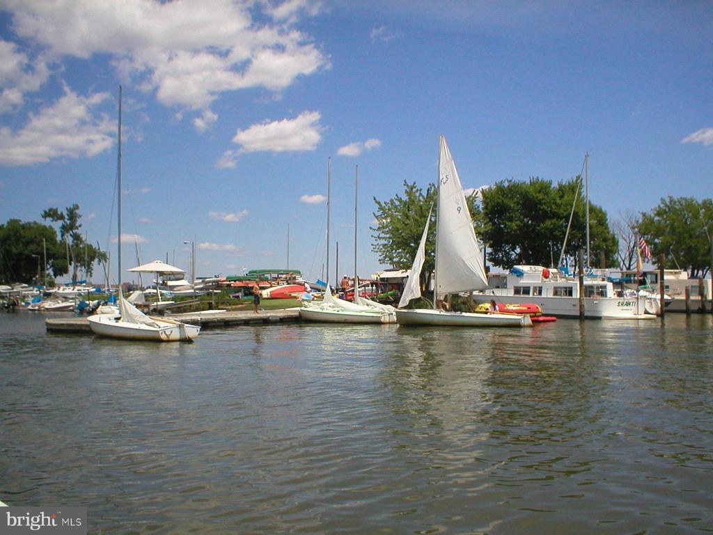 Nearby Belle Haven Marina w/public boat rentals - 8522 CYRUS PL, ALEXANDRIA