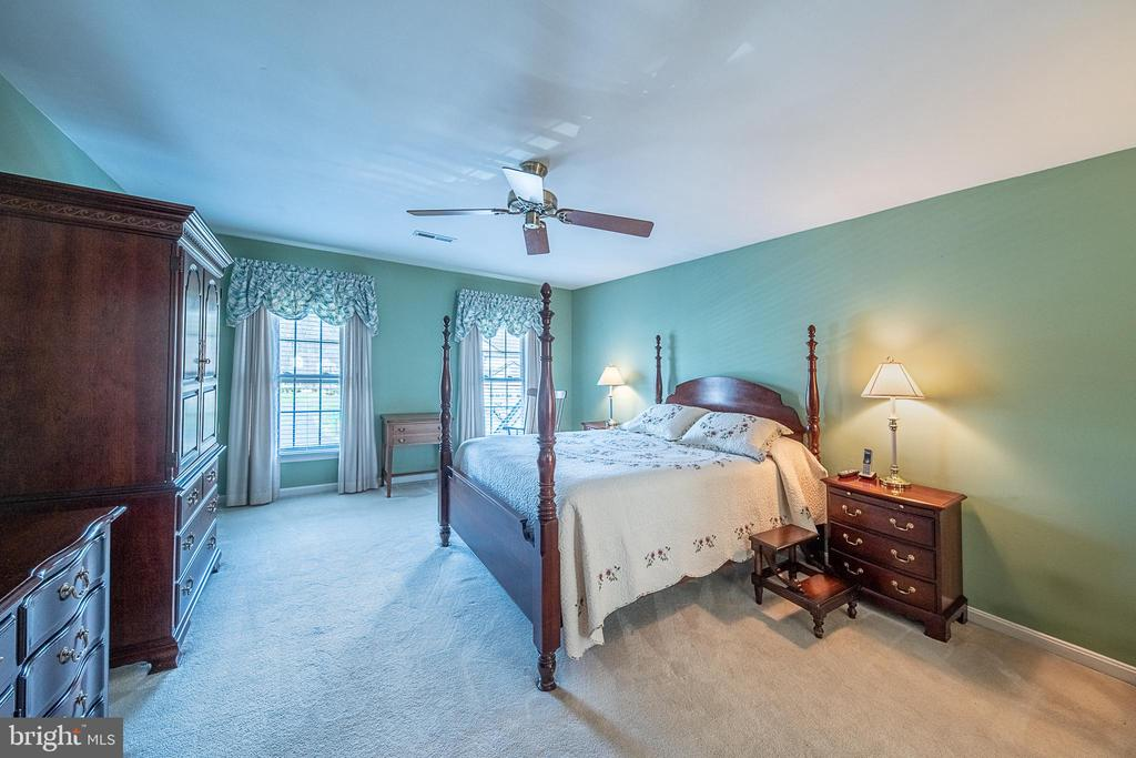 Relaxing master suite - 5207 BRAYWOOD DR, CENTREVILLE