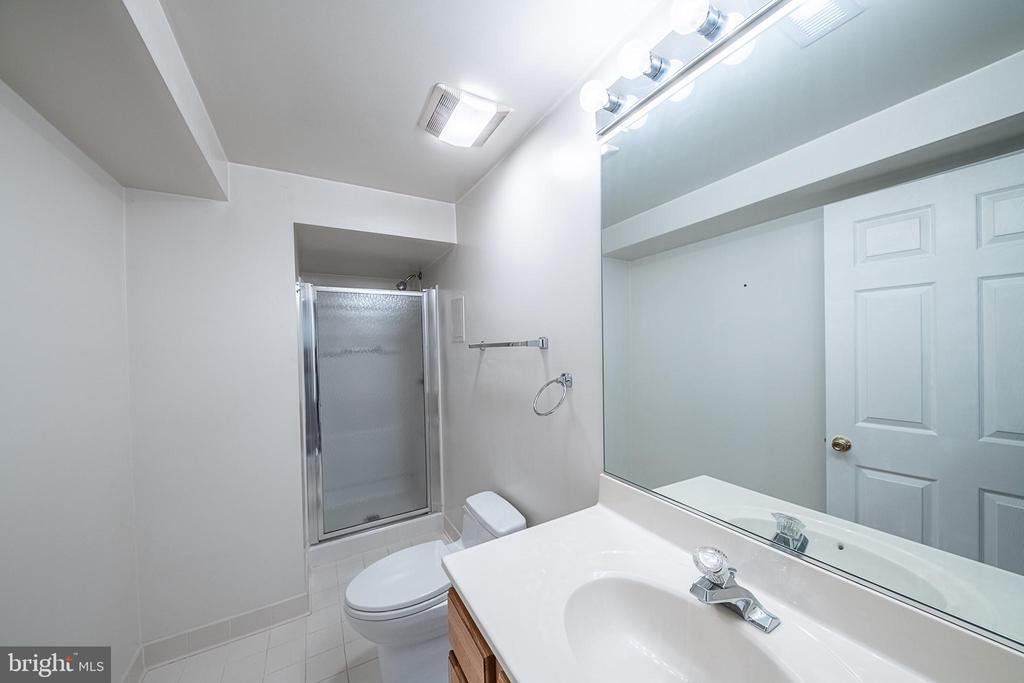 Lower level full bath - 5207 BRAYWOOD DR, CENTREVILLE