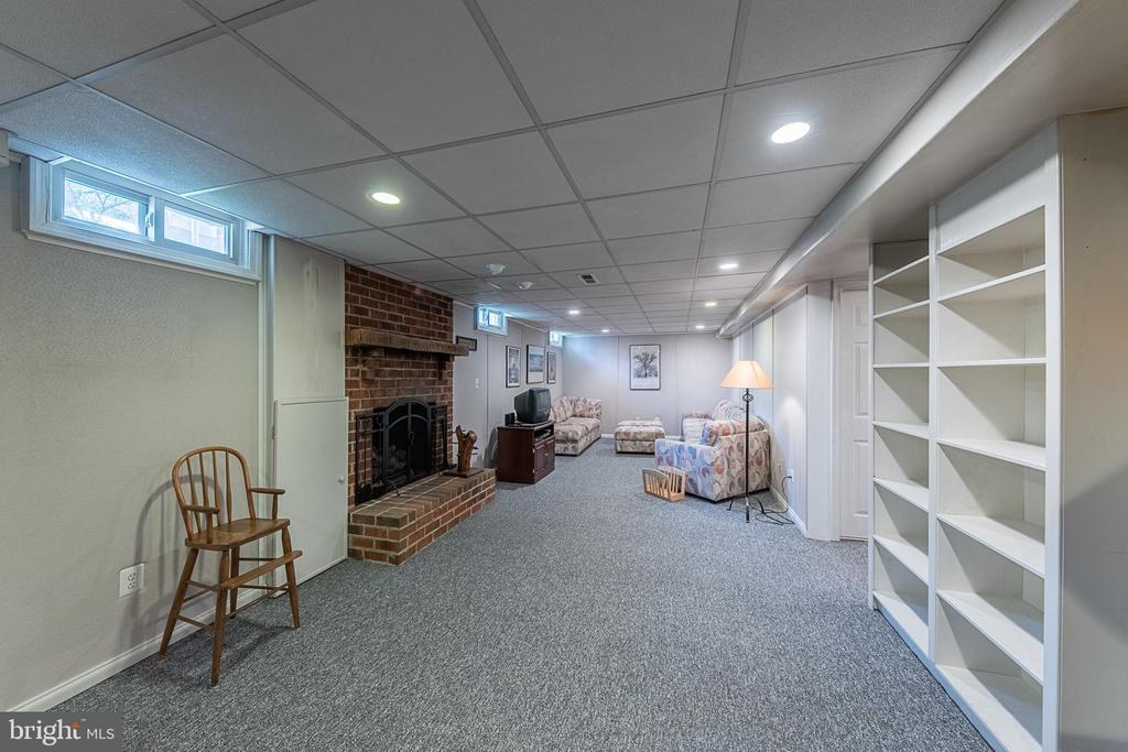 Spacious rec room in basement - 5207 BRAYWOOD DR, CENTREVILLE