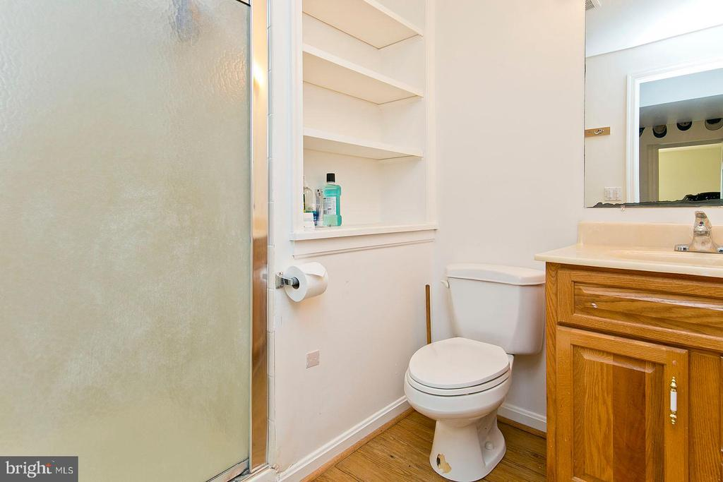 lower level full bath - 35951 ASHBY FARM CIR, HILLSBORO