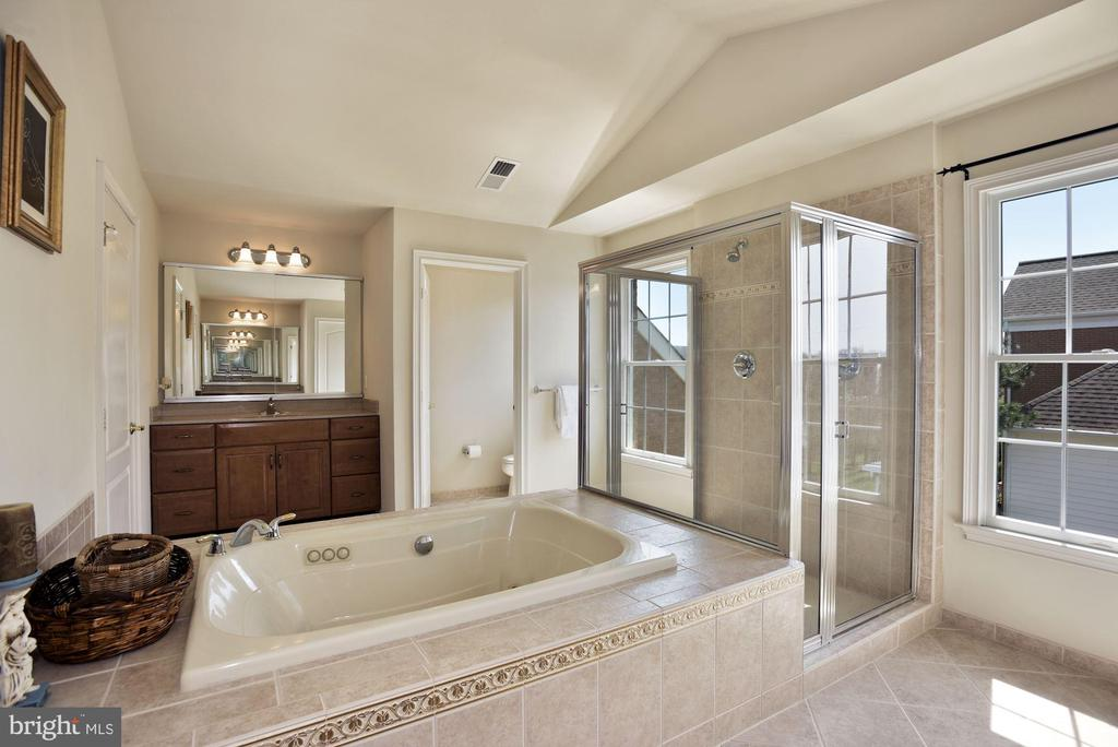His and Her Luxury Bath - 19979 BELMONT STATION DR, ASHBURN