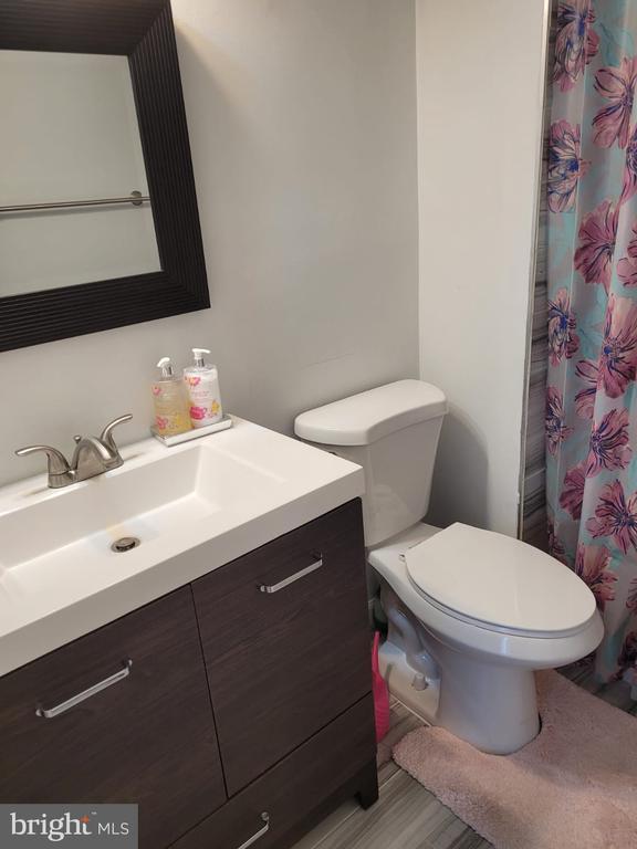 Bathroom 1 - 5456 BRADDOCK RIDGE DR, CENTREVILLE
