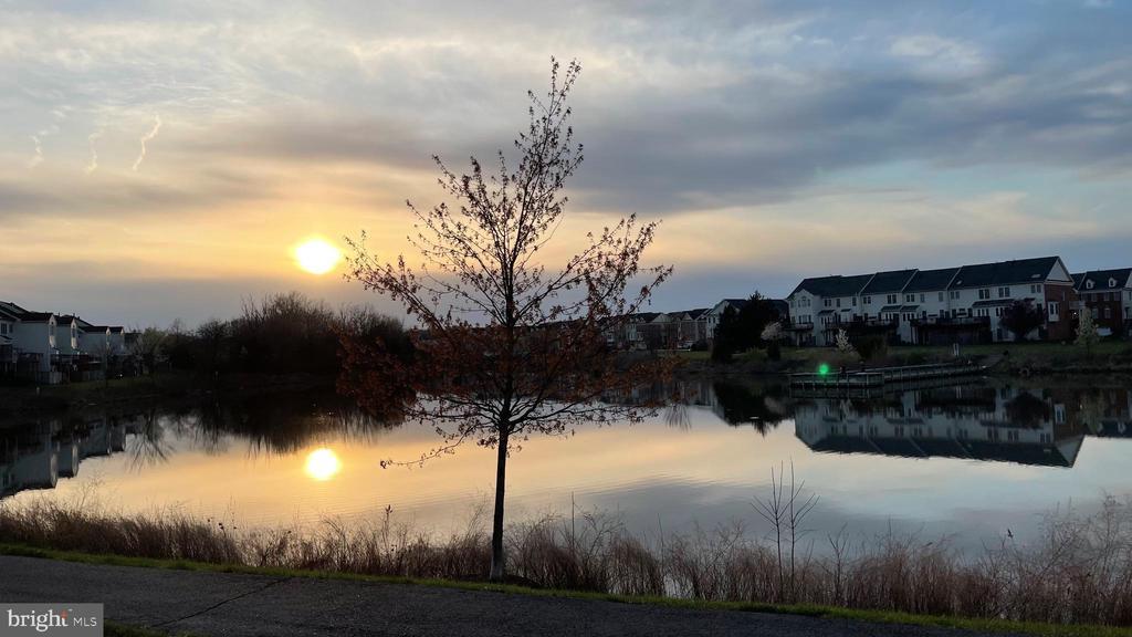 View at Sunset - 25331 ELDRIDGE TER, CHANTILLY